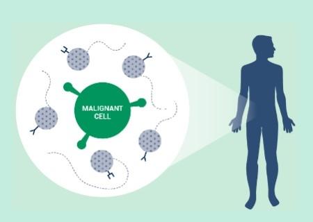 PPF amplía su inversión y adquiere una participación significativa en la compañía de terapia celular T Autolus Therapeutics